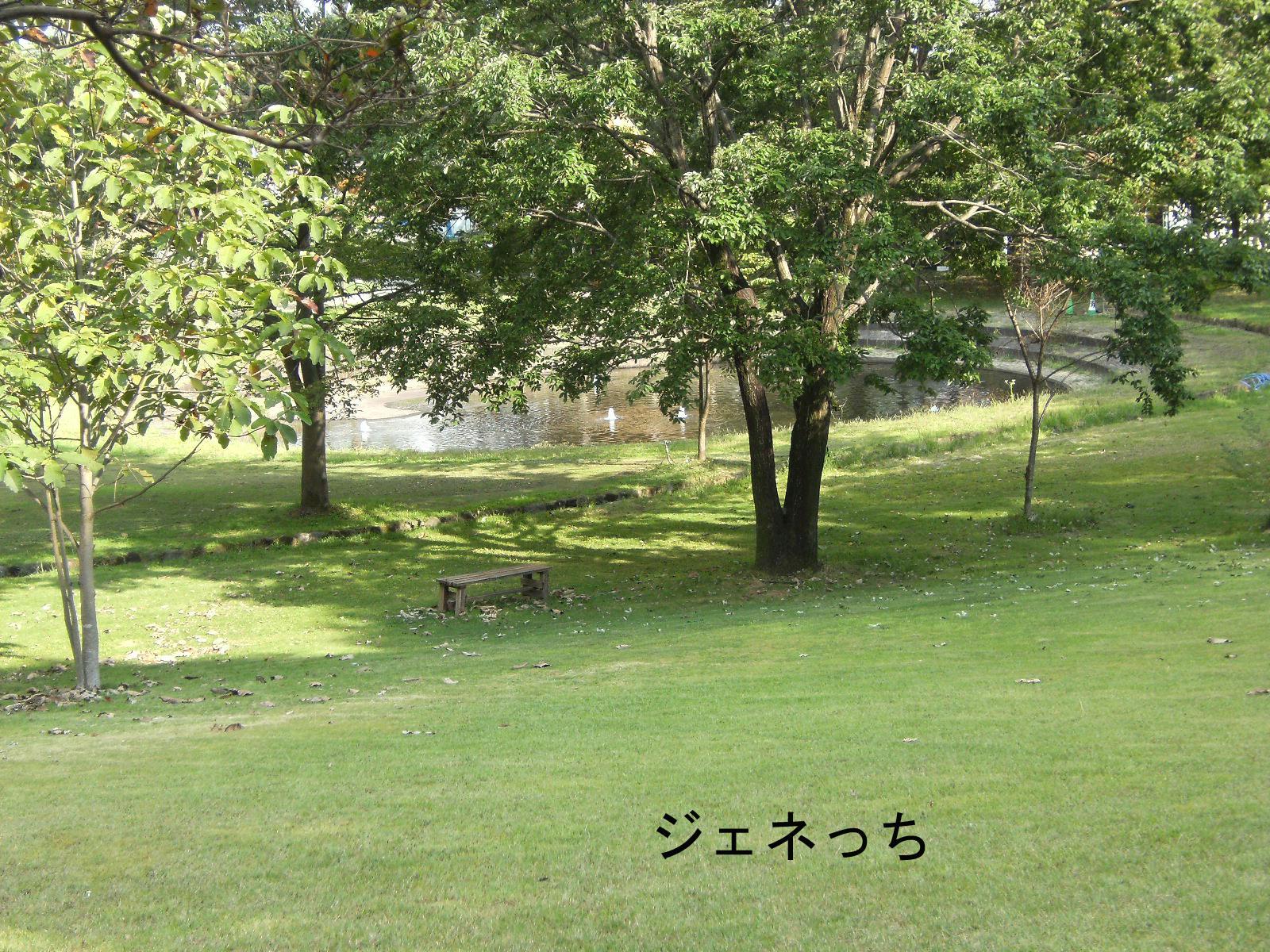 秋の行楽シーズンに向けて、デジカメ・一眼レフカメラ、デビューを考えるなら!!ニコンD3100